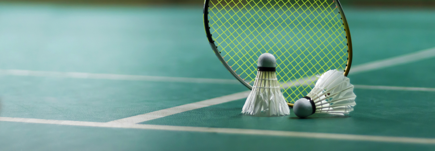 Coventry sports badminton